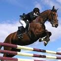 Horse Racing horse racing