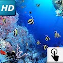 Touch HD LWP: Tropical fishes