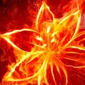 Fire animation HD mms animation