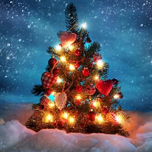 Clip Christmas cực hay