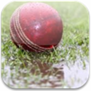 DL Calculator for Cricket