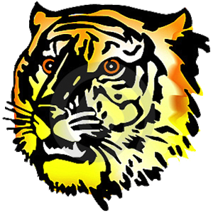 Amazing Tiger Facts