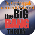 Big Bang Theory Raj