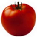 TomatoBrowser