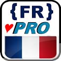 French lessons (PRO)