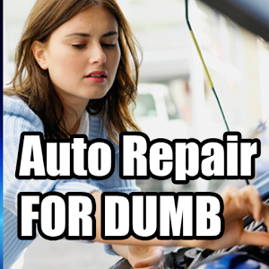 Auto Repair For Dumb auto body repair manuals
