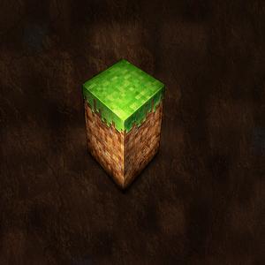 Style Minecraft Evo