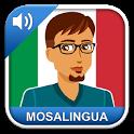 Learn Italien with MosaLingua