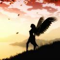 Fairy fairy widget