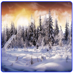 Snow Wallpapers New