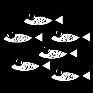 The Fishery Sandbox