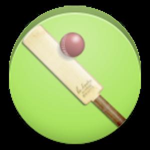 Casual Cricket