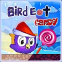 Bird eat Candy
