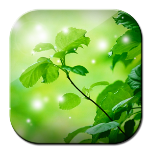 Green HD Free Image
