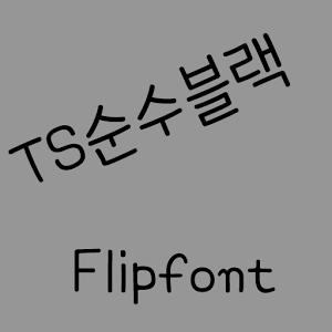 TSpureblack Korean FlipFont