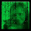Matrix Effects