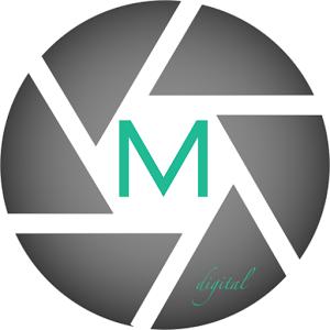 Max Digital digital flashlight