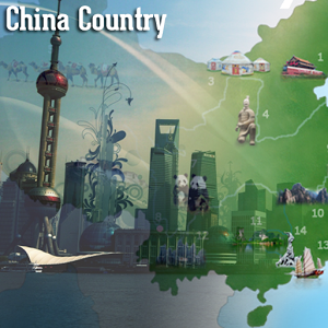 China Pro china