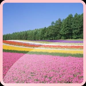 Beauty Hokkaido Wallpaper