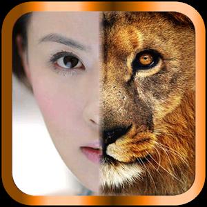 Funny Face - face, eyes, morph face photos