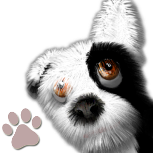 Oh My Dog - Virtual Pet virtual
