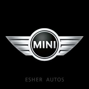 Mini Esher
