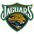 Theme: Jacksonville Jaguars