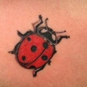 Tattoo Ladybird Theme