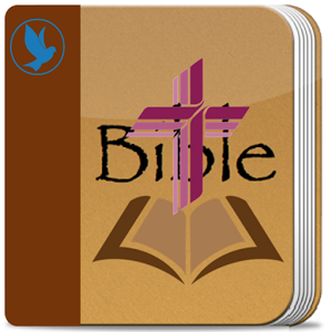Holy Bible : Amplified Bible