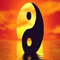 Best Tai Chi Method euler method options