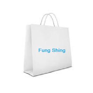Fung Shing allegacy shing