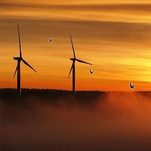 Windmill Sunset Live Wallpaper