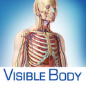 Visible Body 3D Anatomy