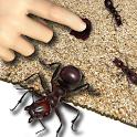 Crash Ants Live Wallpaper