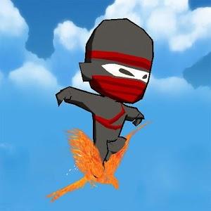 Zen of Ninja ninja