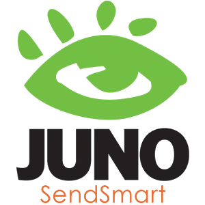 Juno -Data Entry to Tally ERP9 simple data entry