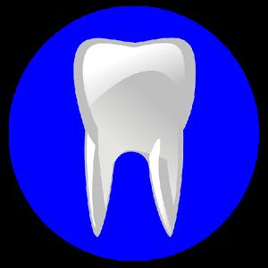 CDA - Dental Assisting Exam