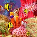 Screensaver Fish 3d screensaver