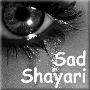 Sad Shayri Collection