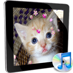 mp3 MusicPlayer Flower theme christmas flower theme
