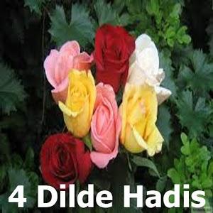 4 Dilde Hadis, English العربية