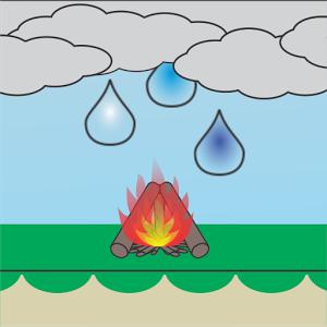 Save The Blaze
