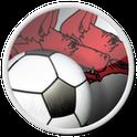 FC Dinamo București: For Fans