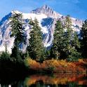 Mountain gander mountain coupons