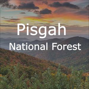 Explore Pisgah