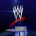 WWE Ultimate Fan+ ultimate zip