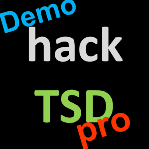 hackTSDpro Rally Computer Demo