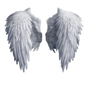 KNOW YOUR ANGELS little angels cp toplist