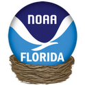 Tides- Florida Edition by NOAA