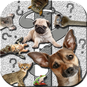 Ask Funny Animals